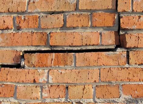 160511_building_pest